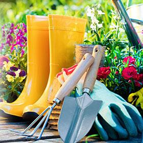 Various garden tools sitting in a flower garden